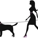 Weeding-dog-sitter