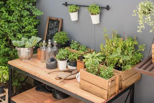 trucchi e consigli di primavera per casa e giardino ... - Piccolo Giardino Consigli