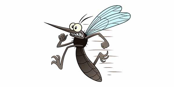 Zanzara disegno per bambini disegni da colorare gratis per